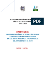 Plan de Prevención y Control Del Cáncer de Cuello Uterino