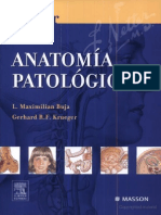 Anatomia Pa to Logic a Netter