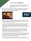 Deer Hunter 2016 Cheats et idéesu000du000d