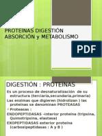 PROTEÍNAS METABOLISMO.pptx