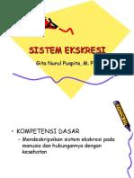 Sistem Ekskresi Manusia