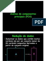 Análise de Componentes Principais (PCA)