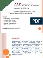 Fosfolipasas C