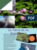 Sociedad y medio ambiente Tema 8