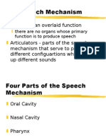 Speech Mechanism