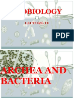 Microbiology Lecture IV