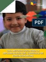 Guía Implementación Del Currículo Print