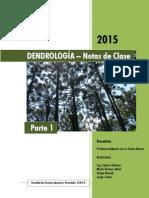 Dendrologia Teoria - Parte 1