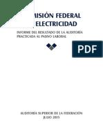 Comisión Federal de Electricidad, Informe Del Resultado de La Auditoría Practicada Al Pasivo Laboral