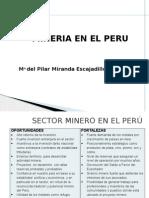 5-Maria Miranda Sunat Mineria