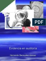 Evidencia en Auditoria