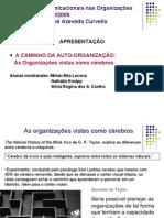 Cérebros e organizações vistos como sistemas 1