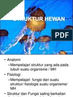 STRUKTUR HEWAN