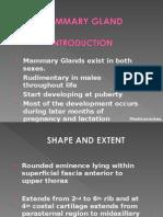 Mammary Gland @  MedicosNotes_com