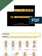 Tema 14. Mutaciones