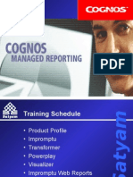 Cognos Features