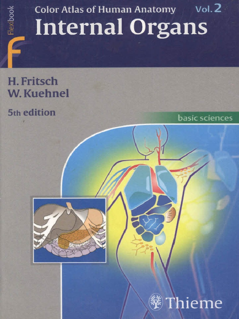 Color Atlas and Textbook of Human Anatomy Vol 2 5th Ed. [H.fritsch,W ...