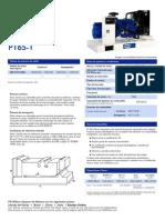 FICHA TECNICCA GRUPO ELECTROGENO P165E1.pdf