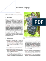 Pinot Noir (Cépage)