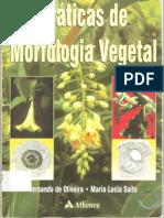 Praticas de Morfologia Vegetal.