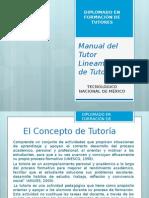 5.1.1. Resumen Del Manual Del Tutor Del SNIT y Lineamiento Del Programa