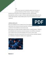 epistemologia trabajo de a relatividad..docx