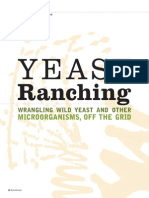 Yeast Ranching