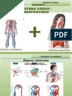 7 Sistema Cárdio Respiratório