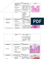 Práctica de Fisiopatología
