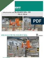Presentacion Valvulas de NG de Estacion