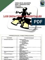Los Impactos Ambientales 2015