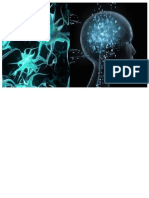Informe de Neuropsicologia