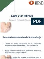 10.- Codo y Antebrazo - Actualización 2015