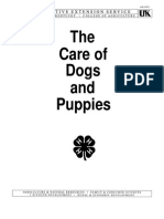 Care of Dogs Puppies