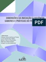 PIBID_23_04_final