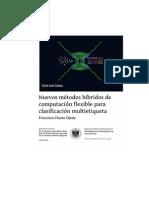 Nuevos métodos híbridos de computación flexible para clasificación multietiqueta.