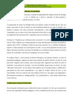 Principios de Didactica Resumo Pintassilgo e Mogarro