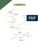 laporan hemostasis sekunder.docx