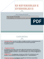 05-Lesiones Reversibles e Irreversibles II Clase