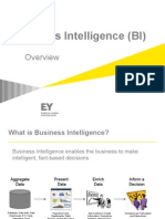 Business Intelligence (General BI)