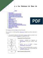 Manual de BD 2010