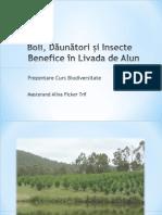 Prezentare Biodiversitate - Alun v3