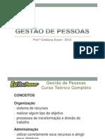 2013-01_Gestão de Pessoas Completo (Cristiana Duran)