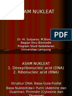 NUKLEAT_ASAM