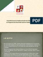 Consultoría acpni2009