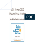 Microsoft SQL Server Master Data Services
