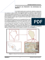 Manifestación de Impacto Ambiental (Gasoducto Gas Natural Industrial, S.a. de C.V.