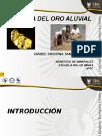 Exposicion Oro Aluvial