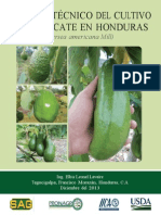 Manual Técnico Del Cultivo de Aguacate