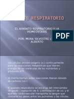 El Aparato Respiratorio y La Homeostasis Por: